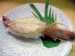 【ランチ】渋谷・廻る 天下寿司 渋谷東口店/ぼたんエビ