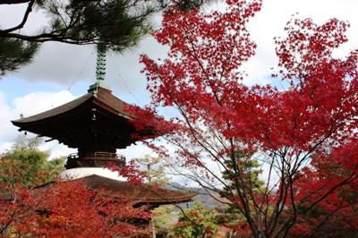 嵐山・常寂光寺 檜皮葺きの多宝塔(重要文化財)