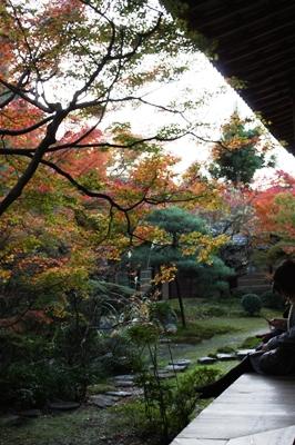 東山・永観堂(禅林寺) 庭園