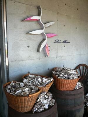 千葉市稲毛海浜公園・レストラン ラ・ミューゼ  お店入口には「ラ・ミューゼ」名物の牡蠣の殻が積み重なる