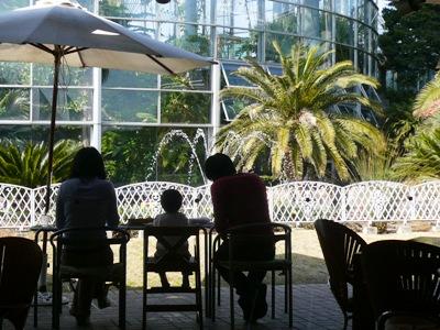 【ランチ】千葉市稲毛海浜公園「レストラン ラ・ミューゼ」 花の美術館を臨み、明るく開放的な店内