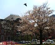東京駅丸の内口赤レンガ駅舎「東京駅ルネッサンス」